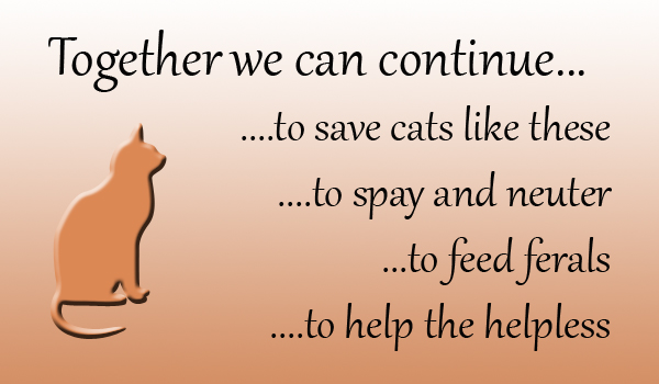 Together we can help the helpless, ferals and continue to spay and neuter.