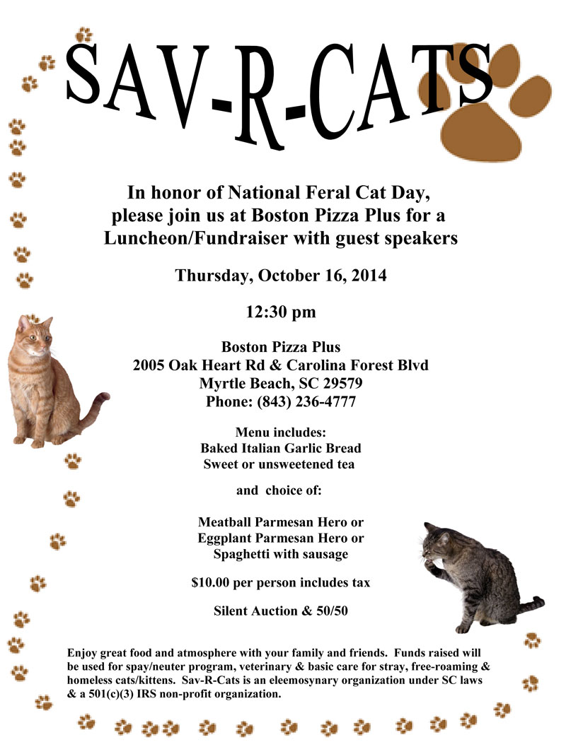 Feral Cat Day Fundraiser