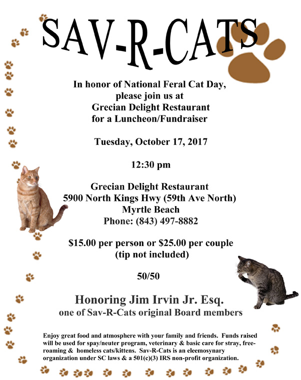 National Feral Cat Flyer